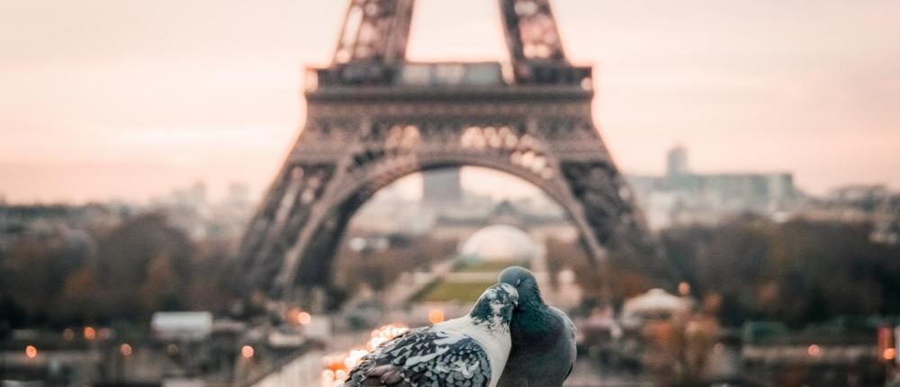 More than ever, it's romantic Paris for Valentine's Day